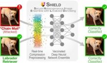 SHIELD - Diagram: Secure Heterogeneous Image Ensemble with Localized Denoising